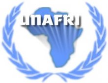United Nations African Institute for the Prevention of Crime and the Treatment of Offenders
